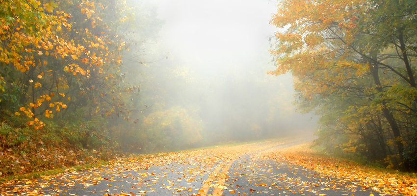 Tips for Fall Autumn Weather